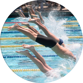 Swimmers diving into pool.
